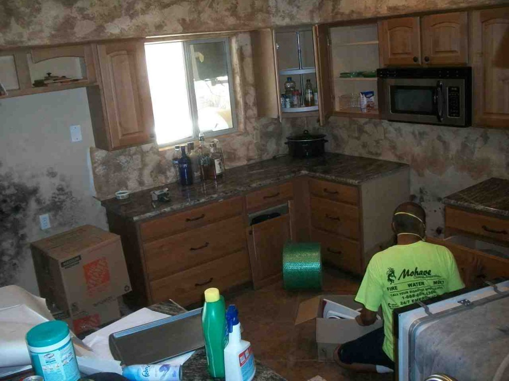 Mold abatement in Nevada (10)