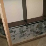 Mold abatement in Nevada (17)
