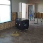 Mold abatement in Nevada (2)