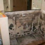 Mold abatement in Nevada (20)