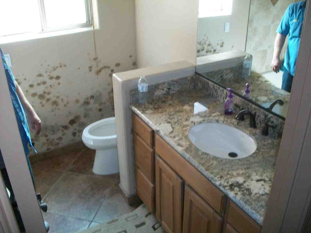 Mold abatement in Nevada (36)