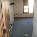 Mold abatement in Nevada (37)