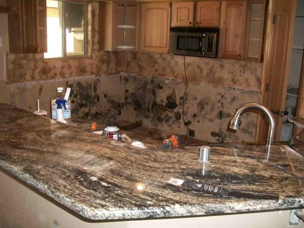 Mold abatement in Nevada (38)