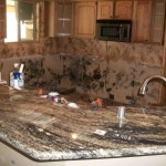 Mold abatement in Nevada (38)