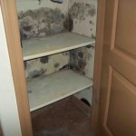 Mold abatement in Nevada (7)